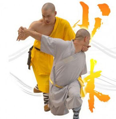 Фотография двух бойцов демонстрирующих циньна