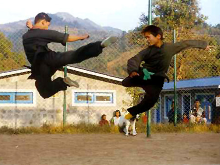 Фотография двух бойцов стиля петуха!