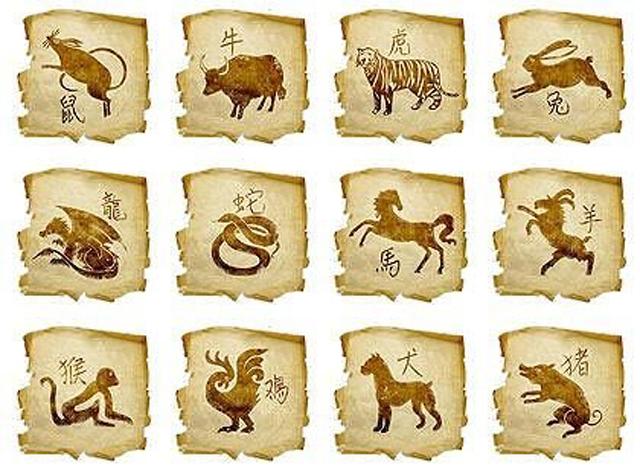 китайскийгороскоп из 12 животных