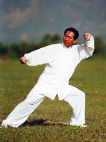 синьицюань, жесткий внутренний стиль, демонстрирует мастер Ди Гоюн