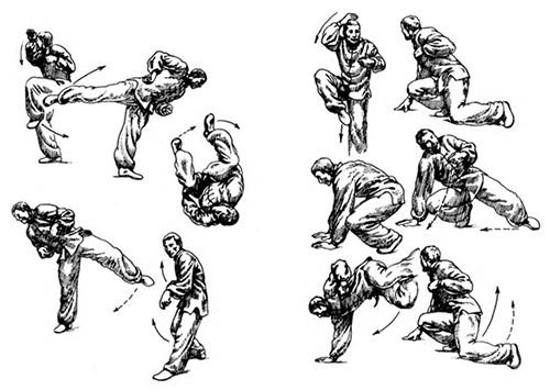 Схема движений стиля обезьяны