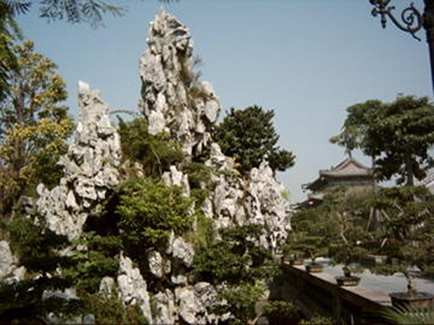 сад с искусственными горами