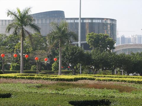 Газоны на китайских улицах