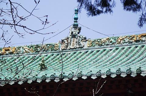 Фотография крыши в академии